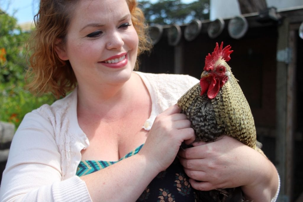 Christine Churchill, owner of the Country Inn Bed & Breakfast in Fort Bragg, with her pet rooster Thumper
